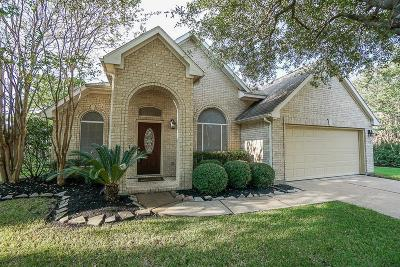 Houston Single Family Home For Sale: 16314 S Southern Stone Drive