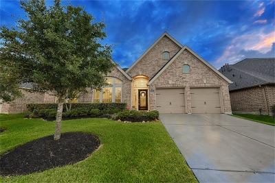 Spring Single Family Home For Sale: 18615 Roslyn Springs Drive