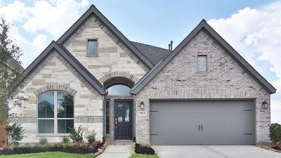Missouri City Single Family Home For Sale: 9015 Emerald Cane Drive