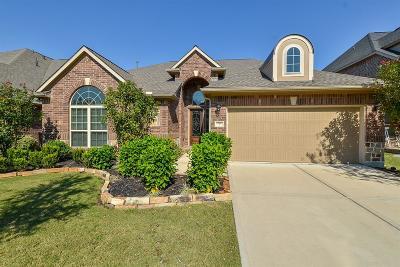 Katy Single Family Home For Sale: 27622 Dalton Bluff Court