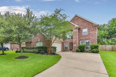Katy Single Family Home For Sale: 2202 Blue Water Bay Drive