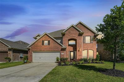 League City Single Family Home For Sale: 4817 Loures Lane