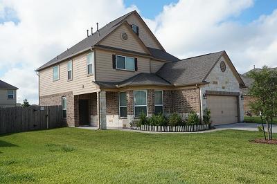Rosenberg Single Family Home For Sale: 2807 Briar Breeze Drive