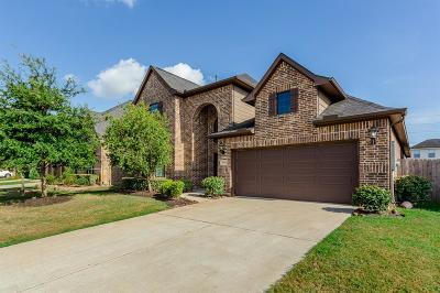 Riverstone Single Family Home For Sale: 3919 N May Ridge Lane