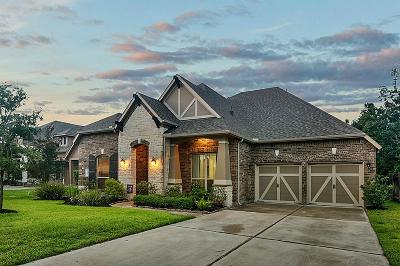 Single Family Home For Sale: 409 Holly Forest Drive