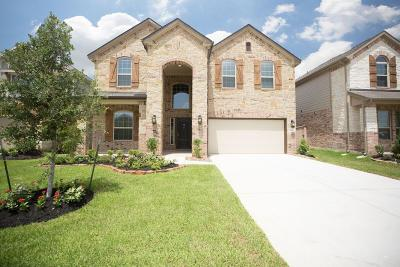 Tomball Single Family Home For Sale: 21723 Rose Maris Lane