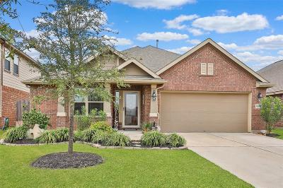 Tomball Single Family Home For Sale: 18014 Fernwood Bend Drive