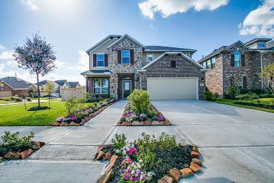 Missouri City Single Family Home For Sale: 2003 Deer Valley