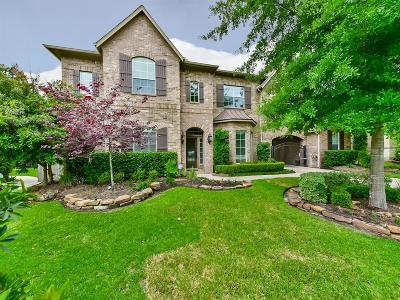 Montgomery Single Family Home For Sale: 110 Quintana Court