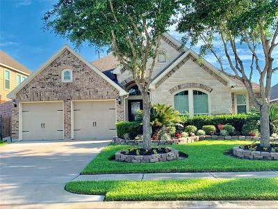 Shadow Creek Ranch Single Family Home For Sale: 13508 Durango Pass Drive