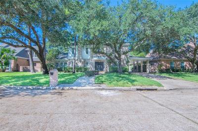 Houston Single Family Home For Sale: 602 Lee Shore Lane