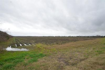 Fort Bend County Country Home/Acreage For Sale: 0000 Dannhaus Road