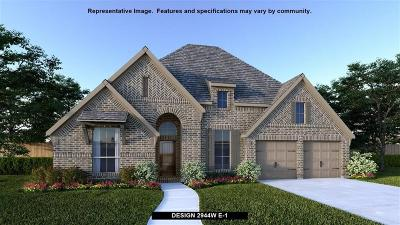 Tomball Single Family Home For Sale: 20142 Desert Foal Drive