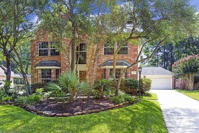 The Woodlands Single Family Home For Sale: 7 S Acacia Park Circle