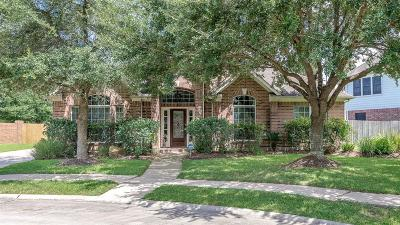League City Single Family Home For Sale: 102 Pelican Court