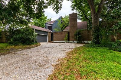 Houston Single Family Home For Sale: 1010 Stoney Hill Drive