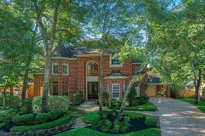 The Woodlands Single Family Home For Sale: 19 Treasure Cove Drive