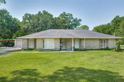 Houston Single Family Home For Sale: 6213 Grapevine Street