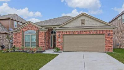 Conroe Single Family Home For Sale: 9989 South Whimbrel Circle