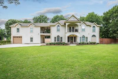Porter Single Family Home For Sale: 19415 Tocanatins Drive