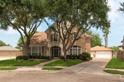 Sugar Land Single Family Home For Sale: 1807 Chatham Trails Court