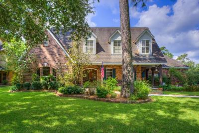 Kingwood Single Family Home For Sale: 1203 Chestnut Ridge Road