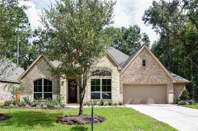 Conroe Single Family Home For Sale: 112 Verdancia Park Court