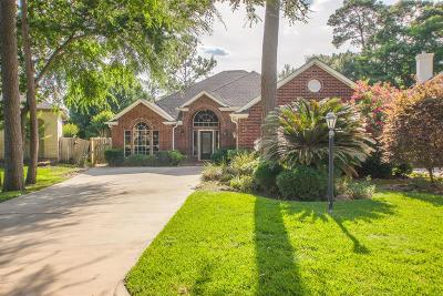 Houston Single Family Home For Sale: 6652 Camptown Circle