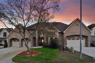 Houston Single Family Home For Sale: 19018 Vantage View Lane