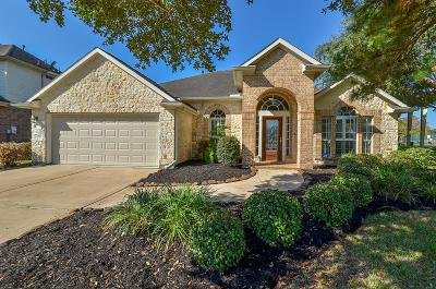 Houston Single Family Home For Sale: 11527 Stone Mallow Drive