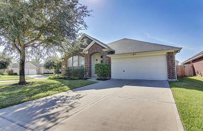 Houston Single Family Home For Sale: 11103 N Forest Falls Court