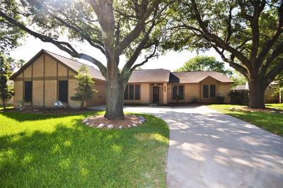 Friendswood Single Family Home For Sale: 1310 W Castlewood Avenue