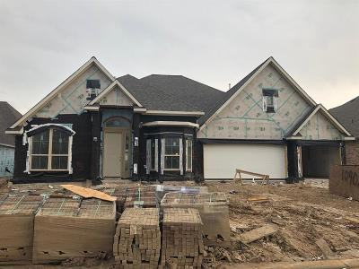 Single Family Home For Sale: 10902 Avery Arbor Lane