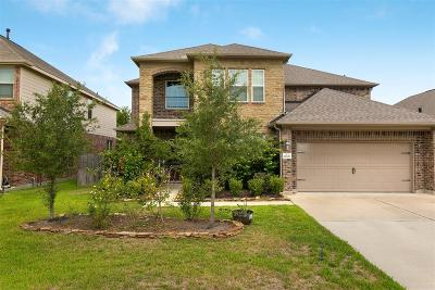 Katy Single Family Home For Sale: 26706 Sooty Tern Drive