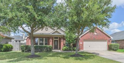 Rosenberg Single Family Home For Sale: 718 Aqua Vista Lane