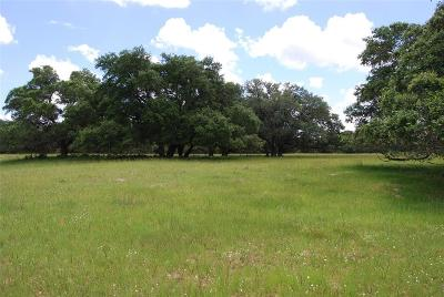 Austin County Country Home/Acreage For Sale: 11273 Hahn Road