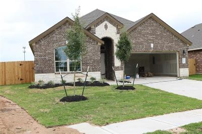 Pearland Single Family Home For Sale: 3714 Lockheed Street