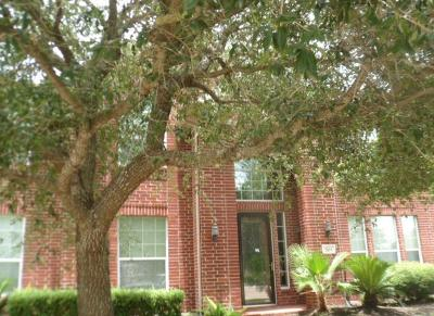 Pearland Single Family Home For Sale: 2103 Sea Cove Lane