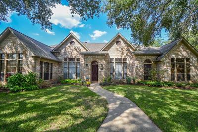 Fulshear Single Family Home For Sale: 4759 Lake Village Drive