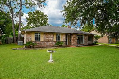Houston Single Family Home For Sale: 11711 Stroud Drive