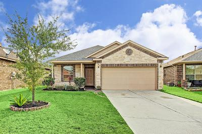 Houston Single Family Home For Sale: 5950 Carpenters Hollow Court
