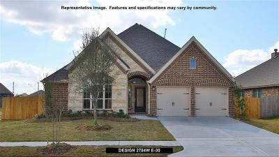 Conroe Single Family Home For Sale: 143 Painted Trillium Drive