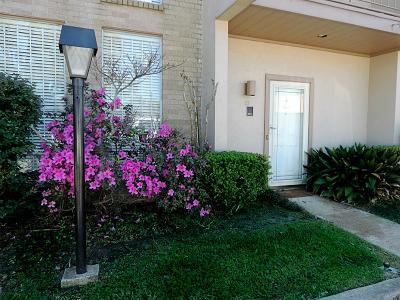 Houston Condo/Townhouse For Sale: 1115 Augusta Drive #23