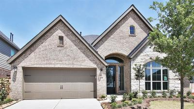 Fulshear Single Family Home For Sale: 28414 Sycamore Falls Lane