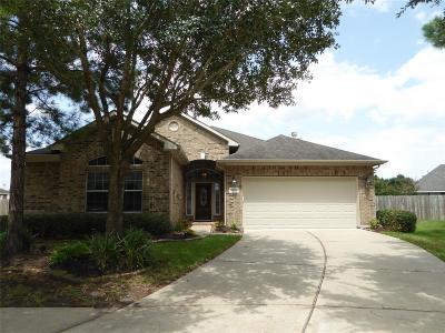 Fort Bend County Single Family Home For Sale: 20006 Ballinger Ridge Court