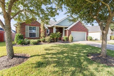 Rosenberg Single Family Home For Sale: 8906 Rocky Knoll Lane