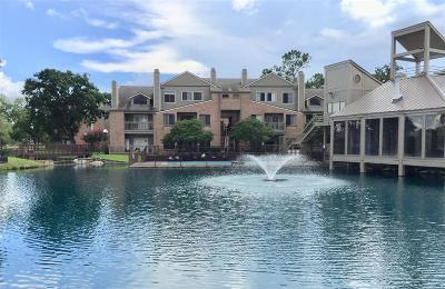 Houston Condo/Townhouse For Sale: 2023 Gentryside Drive #106