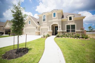 Porter Single Family Home For Sale: 9319 Fairfield Oaks Lane
