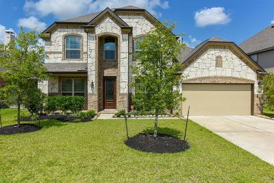 Manvel Single Family Home For Sale: 3122 Currant Drive