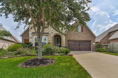 Pearland Single Family Home For Sale: 12201 Cimarron Valley Lane